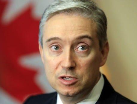 وزیر امور خارجه کانادا با انتقاد از دستگیری های گسترده در هنگ کنگ به متحدانش پیوست